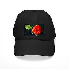 Red rose Baseball Hat
