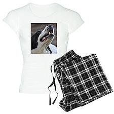 Unique Pet Portraits from Devonshire Dogs Pajamas