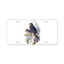 Spotted Harrier Aluminum License Plate