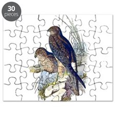 Spotted Harrier Puzzle