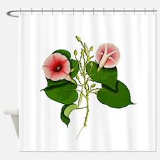 Hawaiian Baby Woodrose 1 Shower Curtain