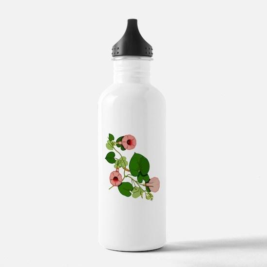 Hawaiian Baby Woodrose 3 Water Bottle