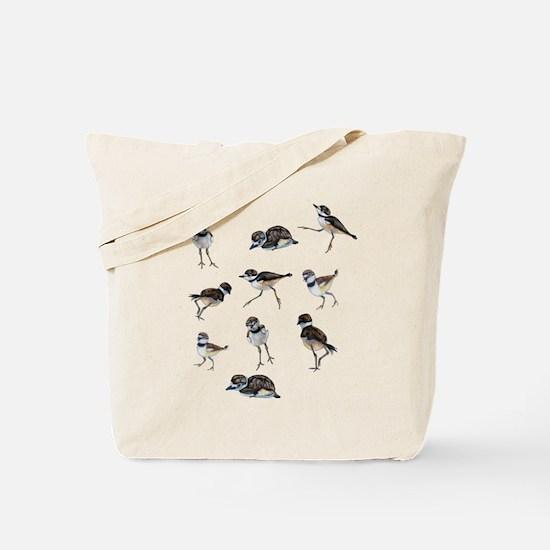 Plover Chicks Tote Bag
