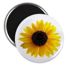 Golden sunflower Magnet
