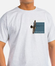SCPBRG Falcon Ash Grey T-Shirt
