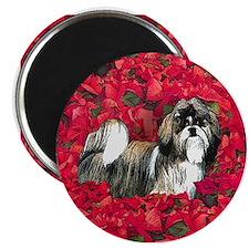 Shih Tzu Christmas Poinsettia Magnet