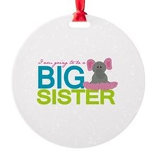I'm going to be a Big Sister Ornament