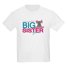 Big Sister Again T-Shirt