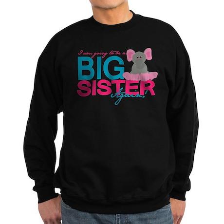 Big Sister Again Jumper Sweater