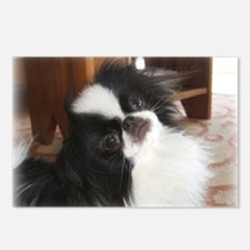 """Japanese Chin """"Palm Pilot"""" Postcards (Package of 8"""