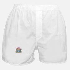 The Amazing Jake Boxer Shorts