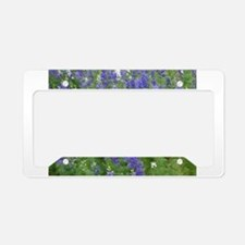 Texas Bluebonnets in Bloom License Plate Holder
