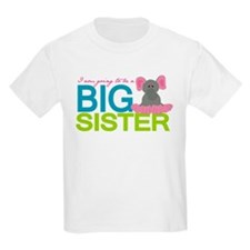 I am going to be a Big Sister T-Shirt