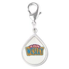 The Amazing Wesley Charms