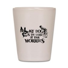 Least of Your Worries Shot Glass