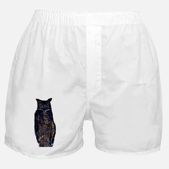 great horned owl Boxer Shorts