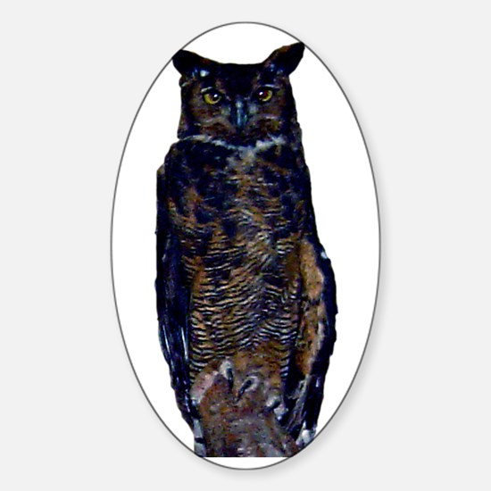 great horned owl Oval Decal
