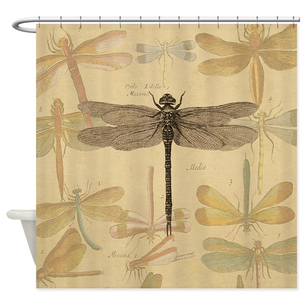 Dragonfly Vintage Shower Curtain By Doodlefly