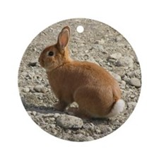 Cute Matanuska Ornament (Round)