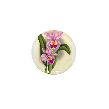Orchid Antique Botanical Prin Mini Button (100 pac