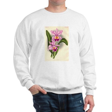 Orchid Antique Botanical Prin Sweatshirt