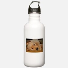 Cooper Wants a Nap Water Bottle