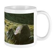 Wildflowers And Boulders Mug