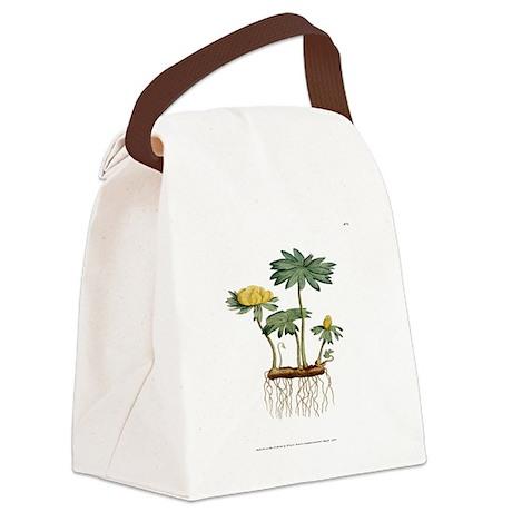 Helleborus Hyemalis PL3 Vol1 Canvas Lunch Bag