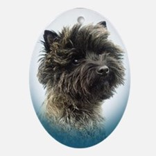 Cairn Terrier Top Champion Girl Oval Ornament