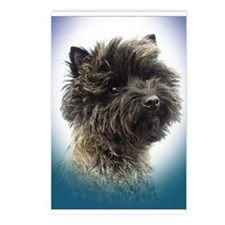 Cairn Terrier Top Champion Girl Postcards (Package