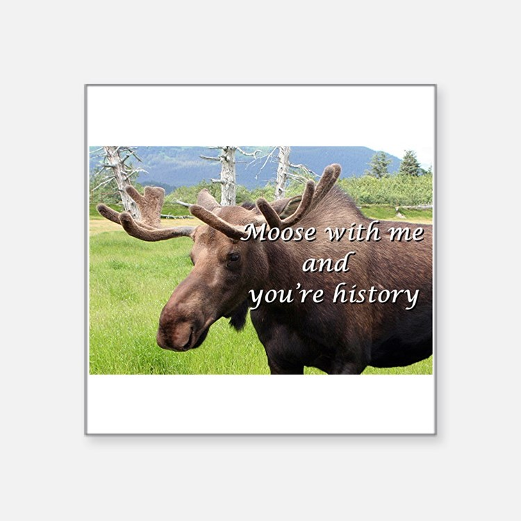 Moose with me and you're history: Alaskan moose St