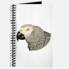 The Wise Grey Journal
