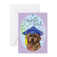 Chocolate Lab Graduate Greeting Card