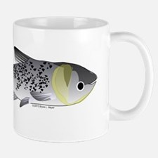 Bighead Carp (Asian Carp) fish Mug