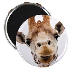 Hangover Movie Part 3 Giraffe Magnet