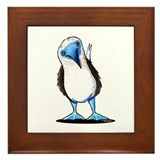 Blue footed booby Framed Tiles