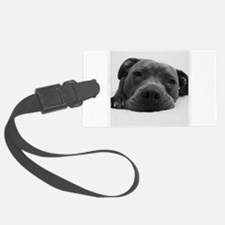 Cute Black And White Pit Bull Face Luggage Tag