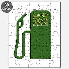 Algoil Puzzle