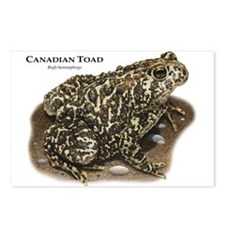 Canadian Toad Postcards (Package of 8)