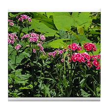 Beautiful Photograph of Georgia Wildflowers Tile C