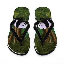 Cute Panda Flip Flops