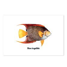 Blue Angelfish Postcards (Package of 8)