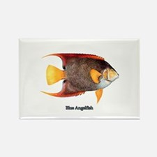 Blue Angelfish Rectangle Magnet
