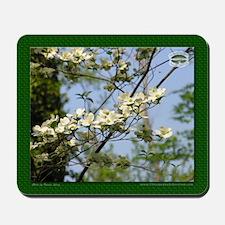 Chesapeake Arboretum Mousepad 04 06
