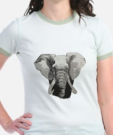 African elephant T
