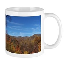 Fall Colors - NC / TN Mountains Mug