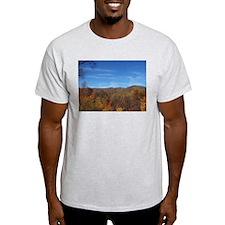 Fall Colors - NC / TN Mountains T-Shirt
