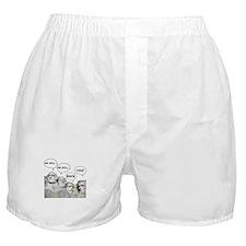Rushmore Rock You Boxer Shorts