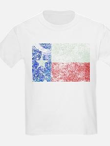 Vintage Texas Flag T-Shirt