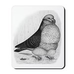Chinese Owl Pigeon Mousepad
